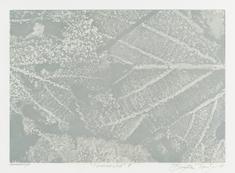 Vinterljus II  (vit)