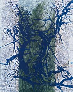 Gamla trädet  (9)