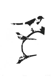 Fågelspegling