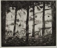 In bland träden II