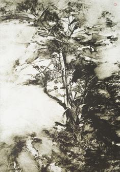 Träd i blåst  (5)