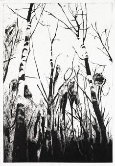 Skogens frestelse (D)