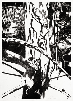 Skogens frestelse: IV