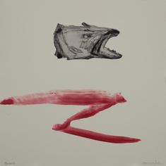 Fiskhuvud  (röd)