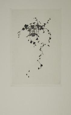 Porträtt av en obetydlig växt IV