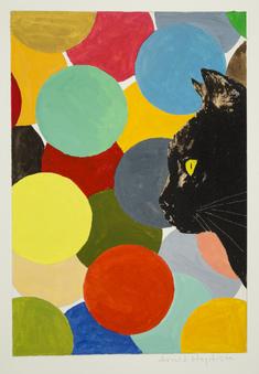utan titel   (katt framför färgade cirklar)