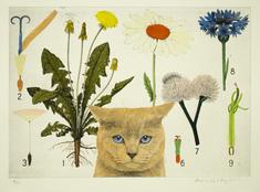 utan titel (katt framför blomplansch)