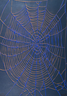 Big Web  (copper on blue)