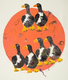 Fågelskådning III